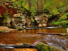 Ricketts Glen State Park 107 by Dracoart-Stock