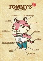 Tommy's Anatomy by gingertom84