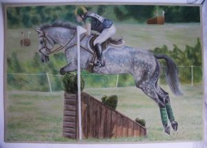 The Dressage Horse by OakBrookeStables
