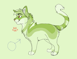 Cat Design by MBPanther