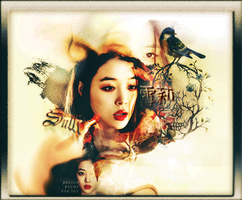 SULLI 2015 by chyayeah