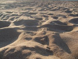 Footprints On The Sand by alazada9855