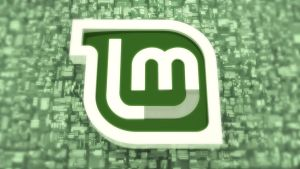 Linux Mint Wallpaper by Reby-c
