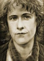 Pippin by howard-shore