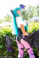 Morrigan 2 - AnimeNEXT by Lily-in-Leather