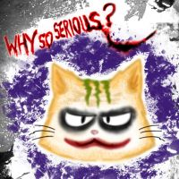 why so serious ? xP by tehKOTAK