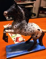 My Dream Appaloosa by Christa-S-Nelson
