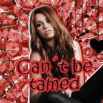 Cant be tamed blend by BrunoEdits