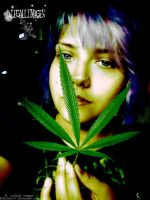me n leaf of blue dream edit by brittymon37