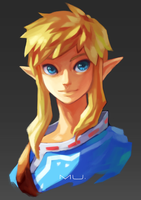 Link? by boringmu