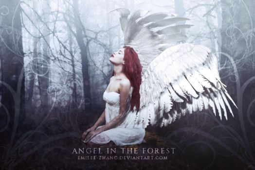 Angel in the Forest by emilee-zhang