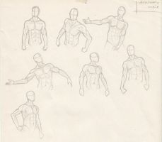 Male anatomy sketches by MuniaElena