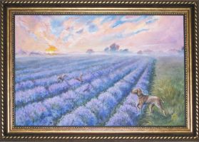 Lavender Fields by Redilion