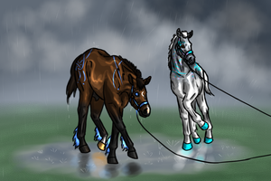 Follow You, Through the Rain, Through the Pain. by silkeponylover