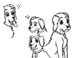 a few face sketchs of a dog by Laxmortaxbella