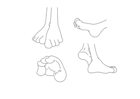 Four Toed Foot References by Java-Mocha