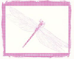 Dragonfly Pink Argyle by JaM-FaiRY