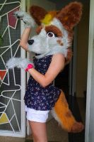 Guess who got her fursuit by blizyrockets