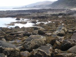 Rocky Shore by Digimaree