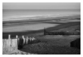 lonely beach by simoner