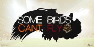 Some Birds Can't Fly by drifter765