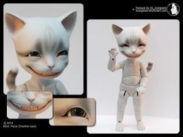 Pipos Cheshire makeup - Katze by scargeear