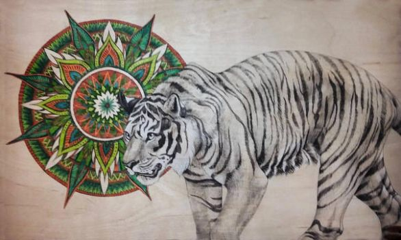 Endangered Species Series Tiger 2 by zalay
