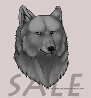 Wolf Bust - ready for coloring by Domisea