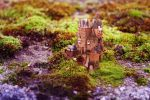 premade background - 011 Micro Castle by thalija-STOCK