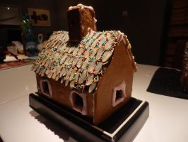 Gingerbread House 2011 by Maroventolo