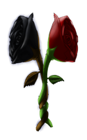 Two Roses by Crazybandit1