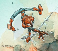 Spidey by daawg