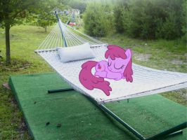 Berry Punch Sleeping on my Hammock by Catoz
