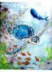 SEATURTLE by Clearshards
