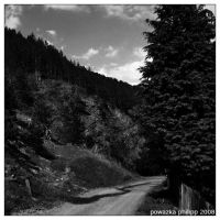 along_the_road by JohnnyCadillac