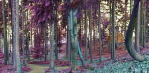 Infrared Panorama Test #2 by SilentMobster42