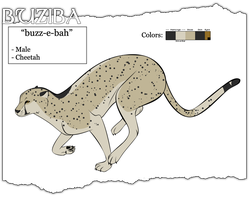 Buziba Ref by Blue-Storm-Spirit