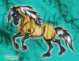 Grulla mare by pookyhorse