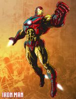 What are you a fan of? Ironman_by_ric3do-d7029m5