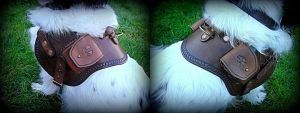 Leather Dog Harness by Half-Goat