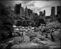 Central Park miniature by dr-phoenix