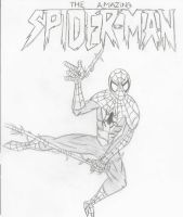 The Amazing Spiderman by KProcks500