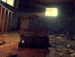 Bird-cage by JohnKyo