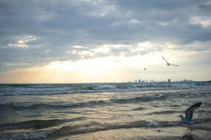 cloudy beach #2 by knilch