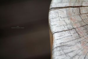 A wooden bench by iso-50