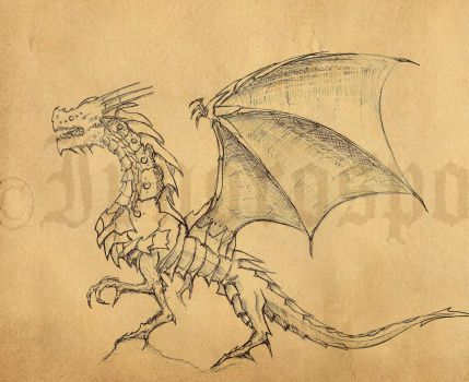 Dragon Sketch Systemeden by Ipnorospo