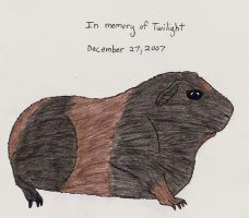 In Memory of Twilight Updated by Up-Your-Arsenal-N90