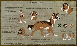 Krawatorii reference sheet by Krawatorii