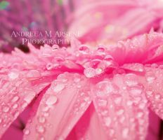 A Droplets Dream by AndreeaArsene