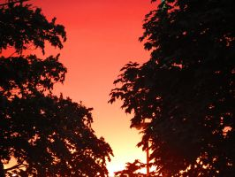 Red Sunset by Michies-Photographyy